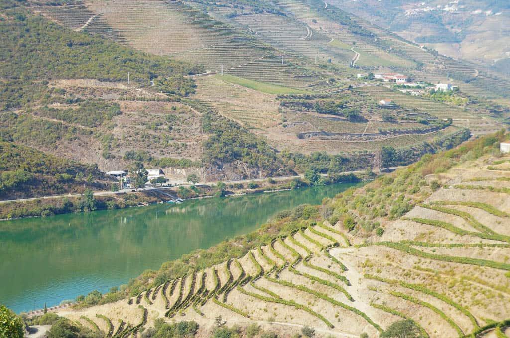 Porto to Douro Valley Wine Tour