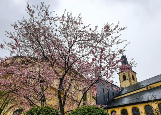 Luxembourg Travel Blog - How To Visit Luxembourg City