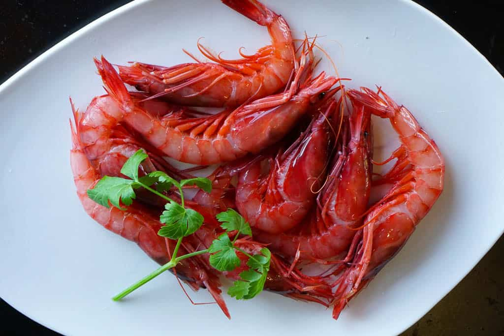 Catalan seafood dishes and Palamos prawns