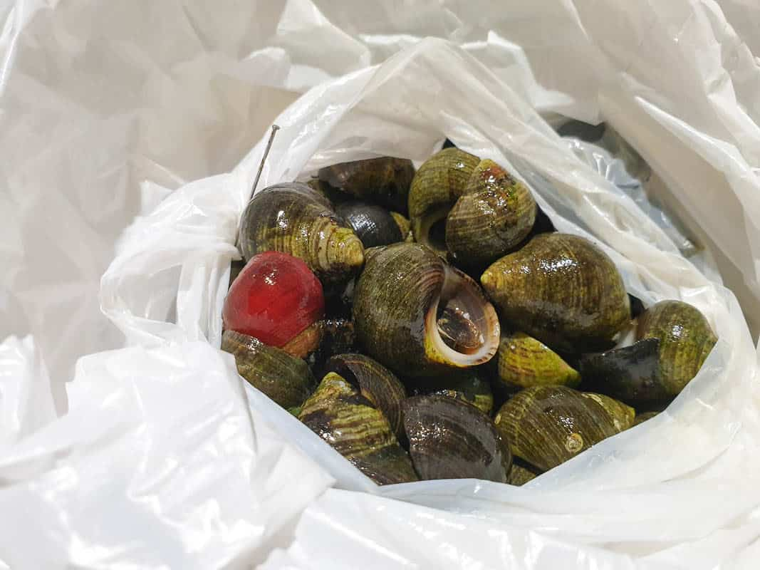 Eating Periwinkles In Ireland