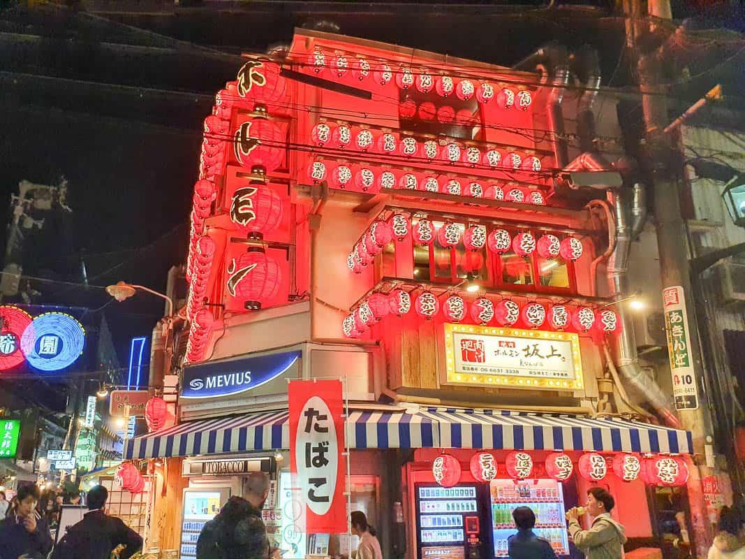 Osaka Sightseeing At Night
