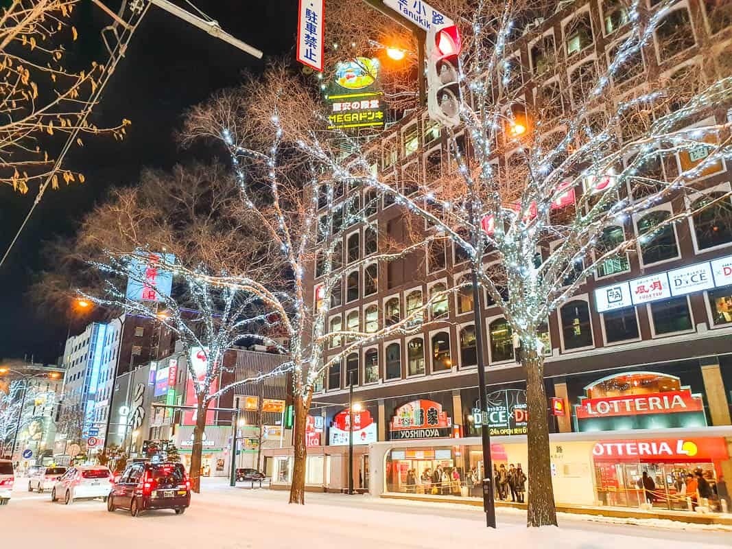 Top Things To Do In Sapporo In Winter