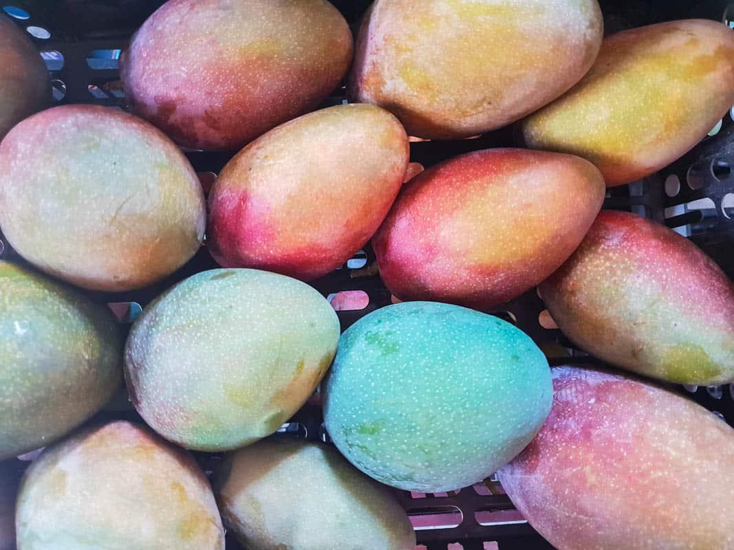 Mangos From Gran Canaria