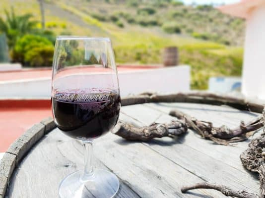 Gran Canaria Wine Guide – Tasting Canary Islands Wine