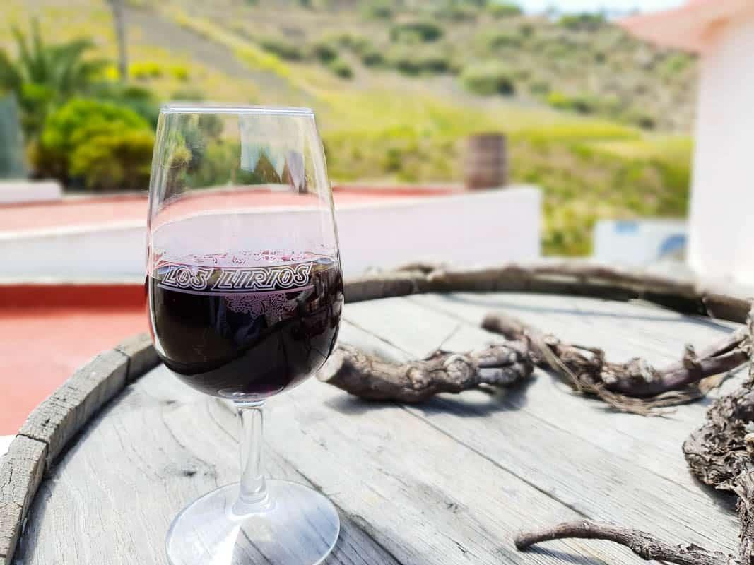 Gran Canaria Wine Guide – Tasting Canary Islands Wine