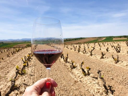 The Best Rioja Wineries And Bodegas To Tour In Spain