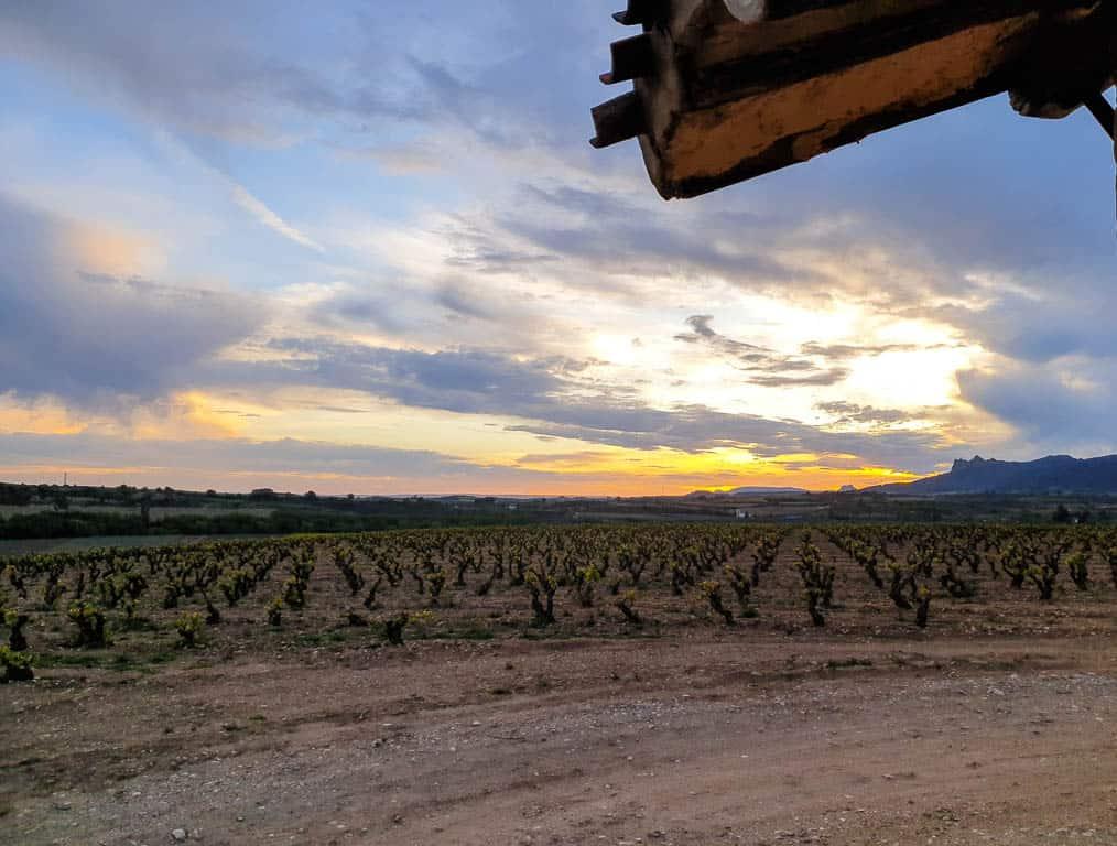 Rioja Wine Region In Spain