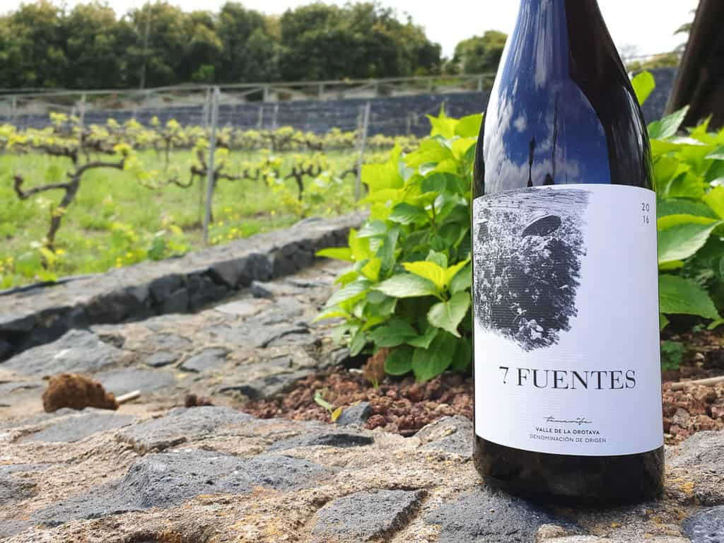 Wine Making in Tenerife