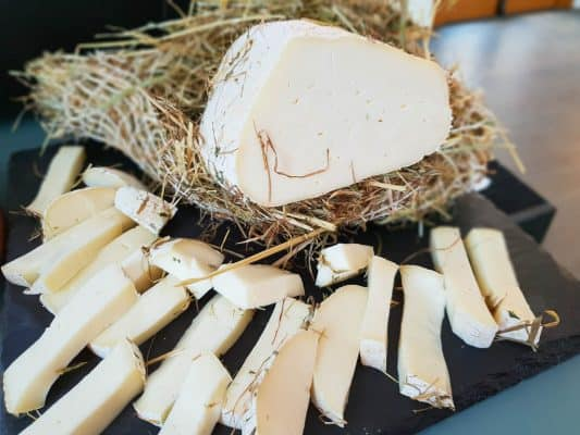 Best Cheese Making Kits